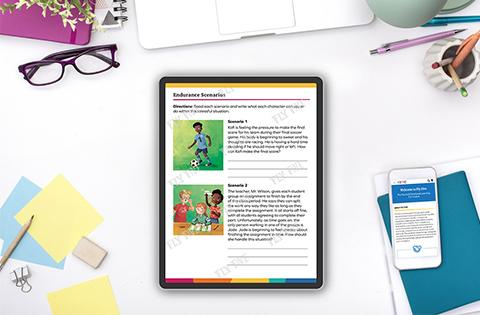 Fly FIve Online Teacher Resource